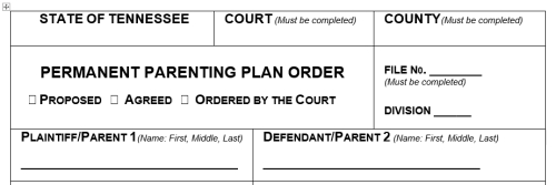 TN Parenting Plan